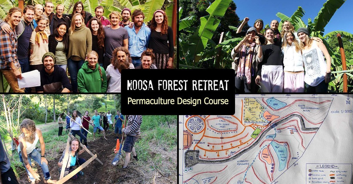Permaculture course queensland australia sunshine coast for Landscape design courses brisbane