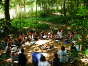 Permaculture Course Queensland PDC